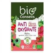 Infusion bio Antioxydante fruits rouges
